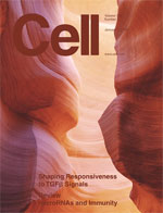 January 2009 cell magazine cover